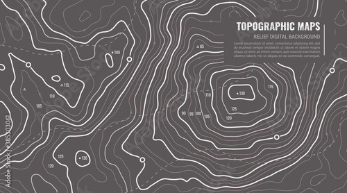 Obraz na plátně Geographic Topographic Map Grid