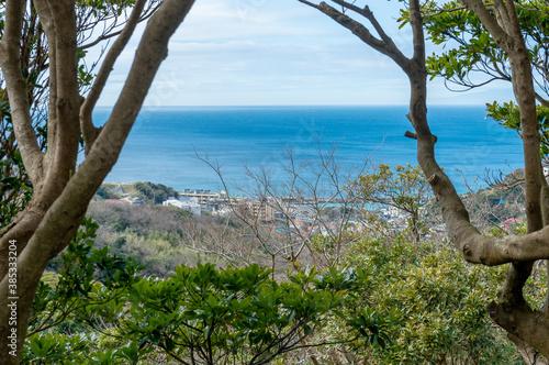 Fototapeta 高台から海を望む風景 オーシャンビュー