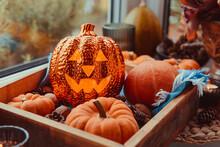 Close Up Halloween Cozy Mood C...