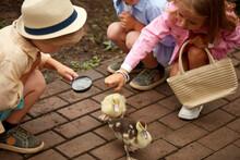 Adorable Group Of Children Str...
