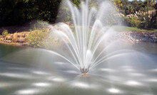 Spouting Fountain, Cropped - L...