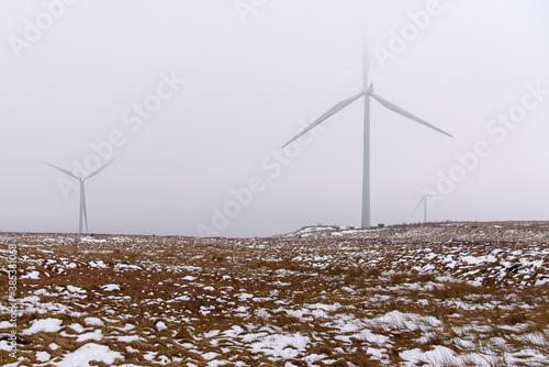 Fotografía Wind turbines in a snowy field shrouded in cold fog on a winter day