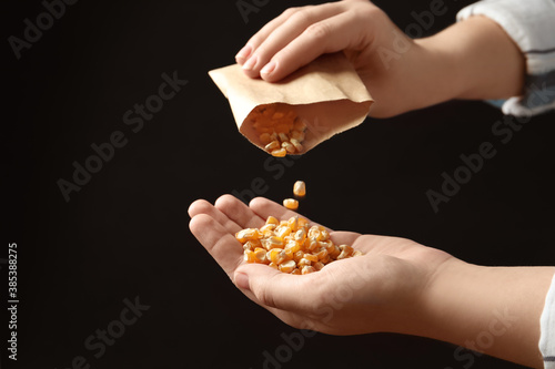 Obraz Woman pouring corn seeds from paper bag into hand on black background, closeup. Vegetable planting - fototapety do salonu