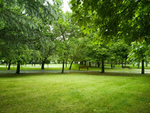 Parque Verde Urbano  Con  Dist...