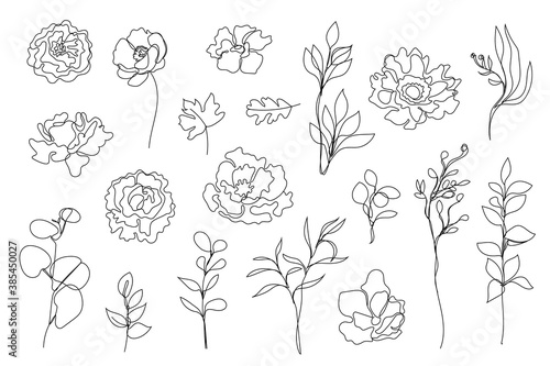 Vector set of hand drawn, single continuous line flowers, leaves. Art floral elements. Use for t-shirt prints, logos, cosmetics - fototapety na wymiar