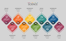 Infographic Science Template. Icons In Different Colors. Include Science, Microbiology, Informatics, Neurobiology And Others.