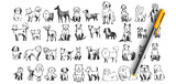 Dogs doodle set. Collection of hand drawn pencil ink drawing sketches templates patterns of domestic animals puppies dolmatins chihuahua pug spitz pets on white background. Human friends illustration.