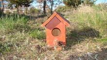 Bird House Bird House, Birdhouse Sparrow's House On Land In The Park. Birds, Animal, Animals, Wildlife, Wild Nature, Garden