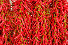 Peppers Drying Outside As Trad...