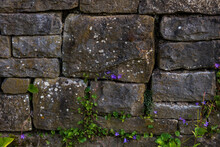 Stone Wall Background With Gre...