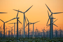 Windmill Farm At Sunset Outside Palm Springs California,