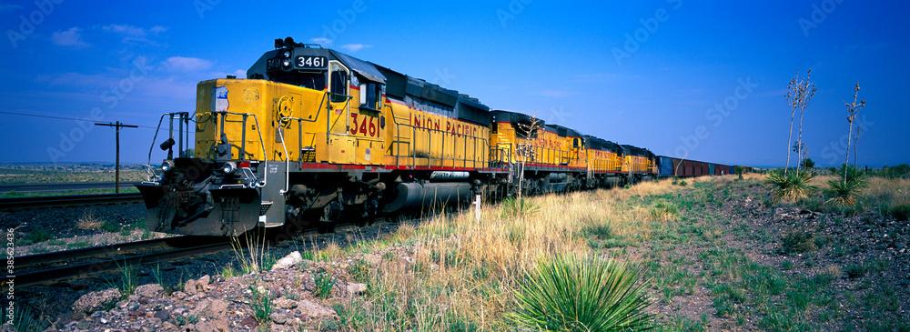 Fototapeta Union Pacific railroad freight train in Arizona.
