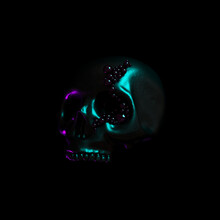 Human Scull 3d Rendering. Black Death's-head In Neon Lights On Black Background.  Scary Halloween Dead Skeleton Head Symbol