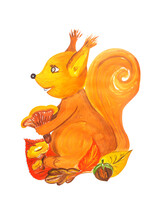 Illustration In Gouache. Fairy Character Squirrel Holding Mushroom In Its Paws.