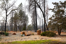 Empty Lot After Wildfire Burned Down House, Empty Lot