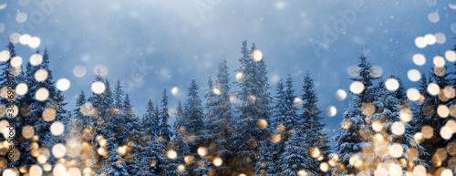 Hintergrund oder Banner / Header für das Weihnachtsfest- Tannenbäume im Schnee mit funkelnden goldenen Lichtern im Vordergrund, viel Textfreiraum
