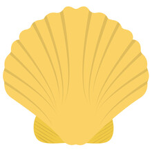 Opened Shell, Seashell Pearl