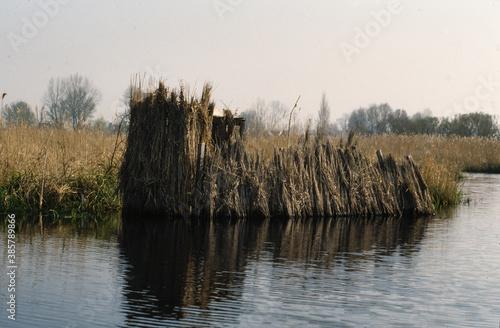 Fotografia affut de chasseurs, Parc naturel régional de la Grande Briere, 44, Loire Atlanti