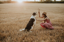 Woman Playing With Collie Dog In Wheat Field During Sunset