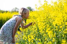 Little Girl Taking Smell Of Ra...