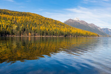 Scenic View Of Autumn Trees Re...