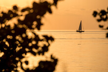 Small Sailboat At Sunset In Th...