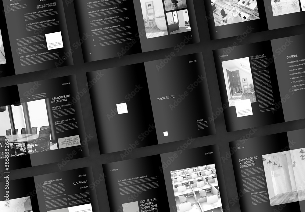 Fototapeta Interior Design Portfolio with Black Accents