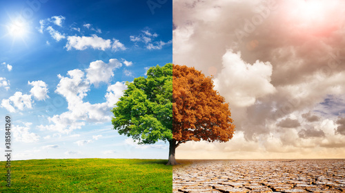 Foto A global warming concept image showing the effect of arid land with tree changing