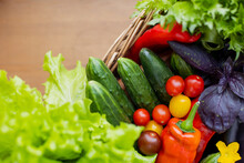 Wicker Basket Filled With Variety Of Ripe Vegetables. Bountiful Harvest. Multi-colored Juicy Fresh: Tomatoes, Zucchini, Lettuce, Cucumber, Basil, Peppers And Herbs. Vitamins Set Natural Eco Bio Vegan