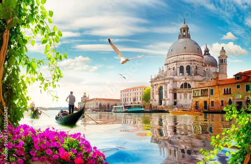 Flowers and Grand Canal