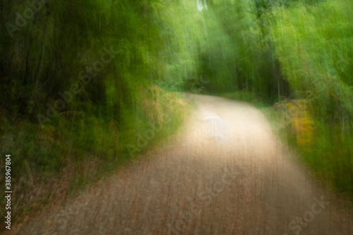 Foto Trepidated capture of a path on a forest