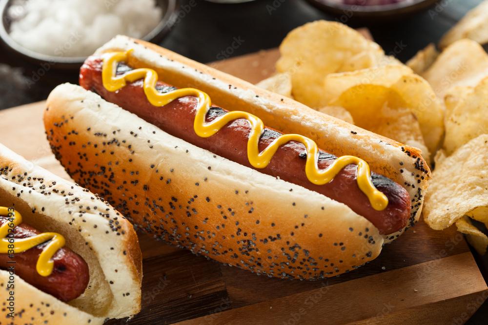 Fototapeta hot dog with mustard