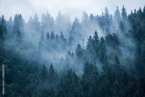 Obraz Misty mountain landscape - fototapety do salonu