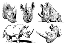 Vector Set Of Rhinos Isolated On White, Graphical Illustration