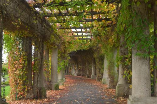 Cuadros en Lienzo Miejska pergola jesienią