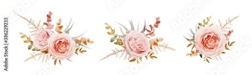 Vector floral bouquet design. Pink, blush peach Roses, fall, winter tones taupe, brown beige cream autumn Eucalyptus branch, leaves, fern. Wedding invite card decorative elegant watercolor element set