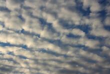 Altocumulus Stratiformis Bright Soft Clouds On A Blue Sky. Sunset In Autumn.
