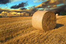 Hay Bales In A Meadow In A Sum...