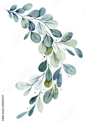 Photo Green leaves. Watercolor hand drawn illustration