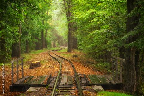 Beautiful railway track in autumn in a city park Fotobehang