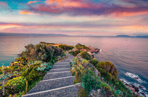 Fototapety, obrazy: Calm evening scene of Milazzo cape. Blooming spring flowers on Mediterranean seashore in Sicily, Italy, Europe. Beauty of nature concept background.