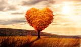 Fototapeta Natura - Baum in Herzform in einer surrealen Landschaft bei Sonnenuntergang