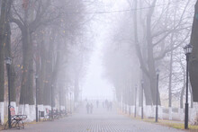 Alley Of The City Park In The Autumn In The Fog. Vague Silhouettes Of People Going Nowhere. Mist, Haze, Low Visibility.