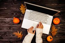 Autumn Pumpkins With Hands Usi...
