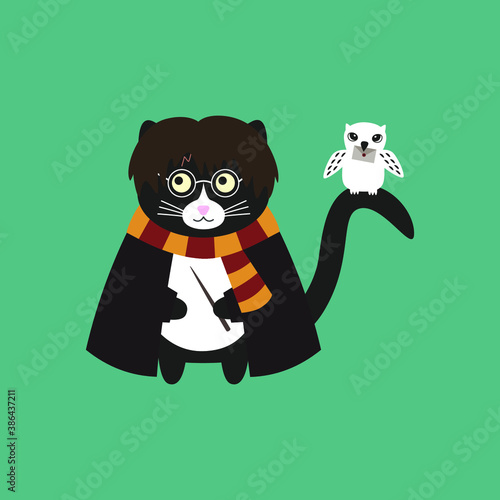 Photo Сute black cat Harry Potter with glasses, with a magic wand in his paws, in a black cloak and striped scarf