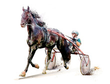 Horse. Equestrian Sport. Trotter Race. Jockey. Harness Racing. Watercolor Painting Illustration. Hippodrome. Isolated On White Background