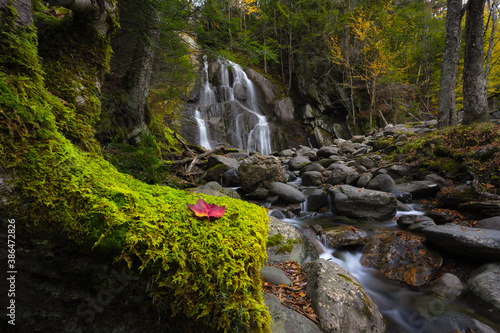 Red leaf on green moss with Moss Glen Falls in the background in Vermont