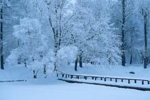 Winter Landscape In A Snow-cov...