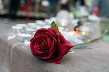 Closeup Of Red Rose And Candles In The Street In Memory Of The   Professor Of History Samuel Paty Murdered By An Islamist In The Street