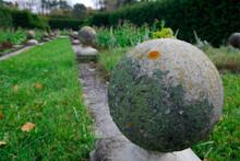 Lichen Encrusted Concrete Glob...
